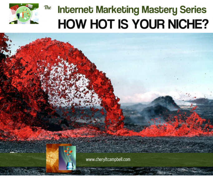 Internet-Marketing-How-Hot-Is-Your-Niche